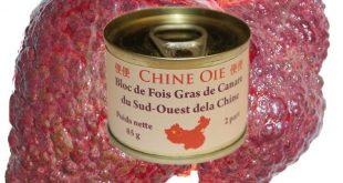 foie_gras_humain_canard_chine