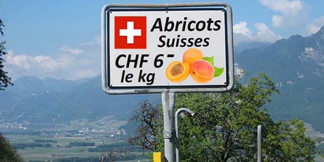 abricots_suisses_